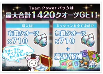 TeamPowerパック詳細